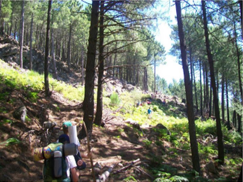 El Gurugú (área medioambiental) ofrece senderismo guiado por el Parque Nacional de la Sierra de Guadarrama