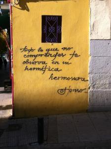 Todo lo que no comprendes te observa en su hermética hermosura | Alonso | Graffitis de Madrid | Esquina Calle del Salitre con Calle de Argumosa | Diciembre 2014