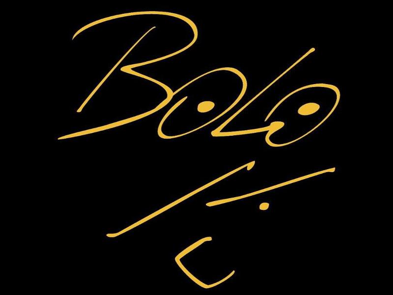 AASR - 6 | Logotipo 'Bolo' García | Del 11 al 17 de mayo de 2015