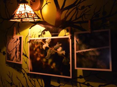 Exposición fotográfica de Patricia Villanueva Frías en la Sala Búho Real de Madrid en 2015