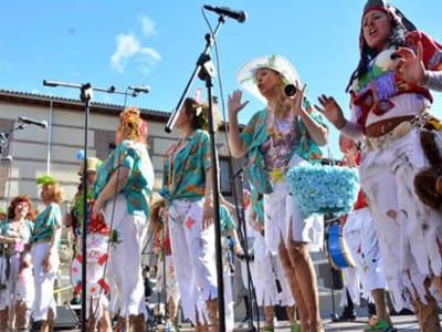 Carnaval de Madrid 2016 | 9º Encuentro de chirigotas, comparsas y murgas | Plaza de la Remonta | Tetuán - Madrid | 07/01/2016 | Actuación Carnaval de Madrid 2015