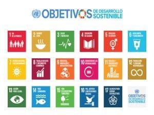 Día Internacional de la Paz 2016 | 21 de septiembre | Los objetivos de desarrollo sostenible: Los Cimientos de la Paz