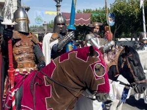 18 Mercado Cervantino | Alcalá de Henares | Comunidad de Madrid | 07-12/10/2016 | Don Quijote en el torneo medieval