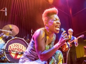 Freedonia | Música con raíces afroamericanas | Desde 2006