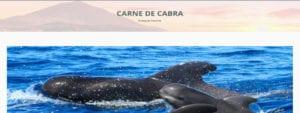 Cabecera | Carne de Cabra | El blog de Tenerife