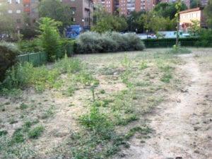 El Ayuntamiento de Madrid renovará 19 zonas verdes en 14 distritos madrileños | Una de las zonas deterioradas que se renovará